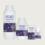 FORTH Violetas