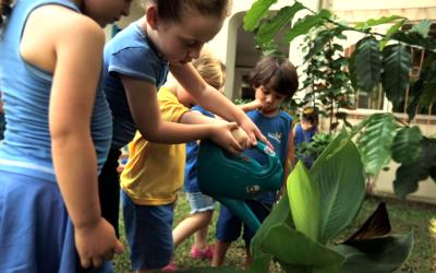 É hora de fazer o Jardim por profissionais | Episódio Escola